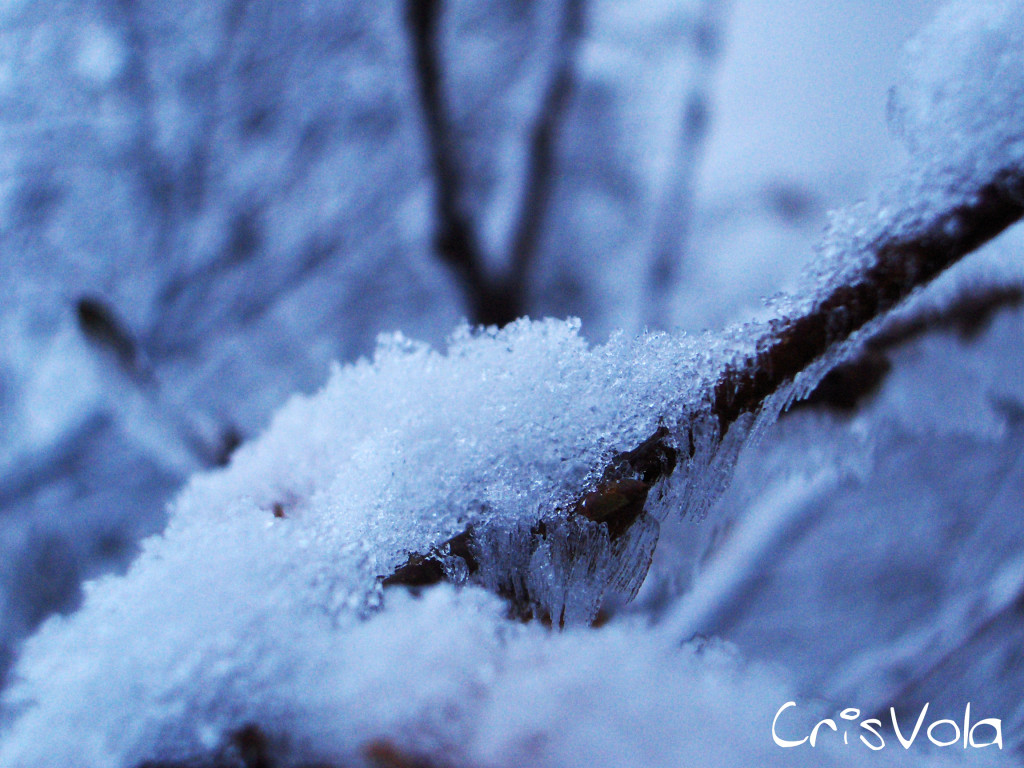 Photo Music moments - snow